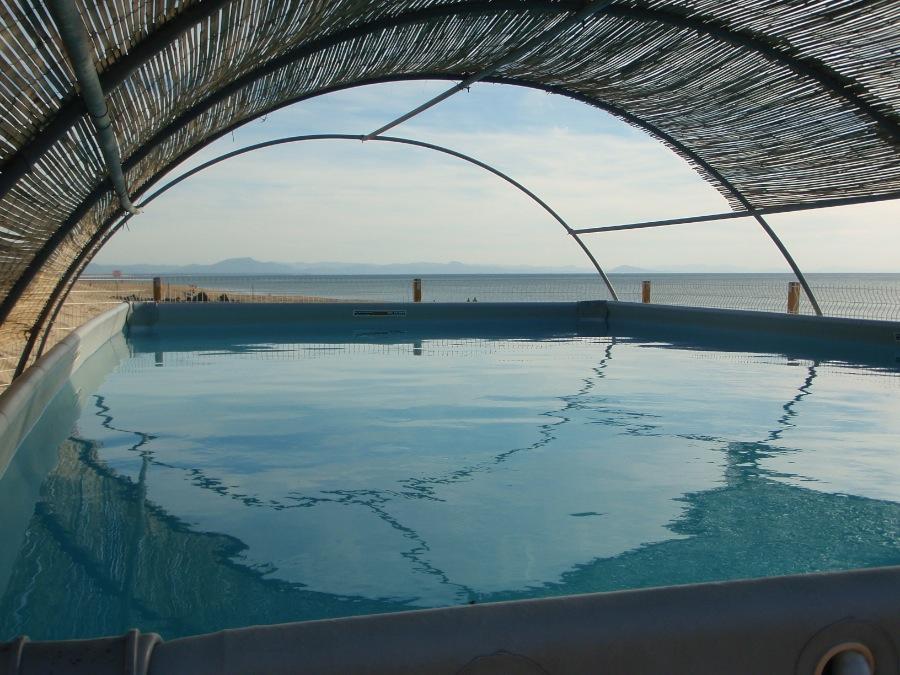 La piscine de l'école de surf Aloha